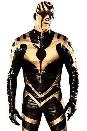 Artist Formerly Known as Goldust, The
