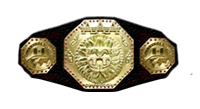 AAA Heavyweight Championship